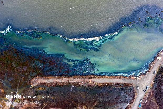 اجرای برنامه اقدام ملی دریای خزر مسکوت مانده است
