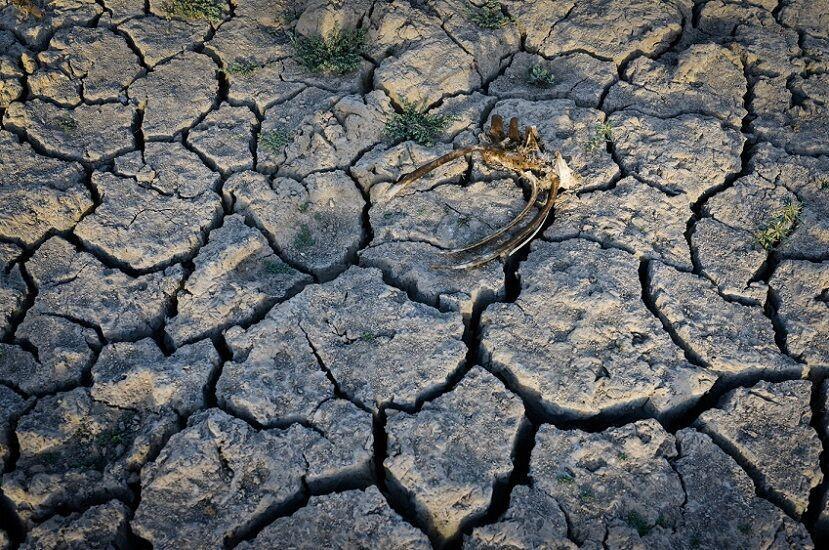 خشکسالی وحشتناک در شیلی