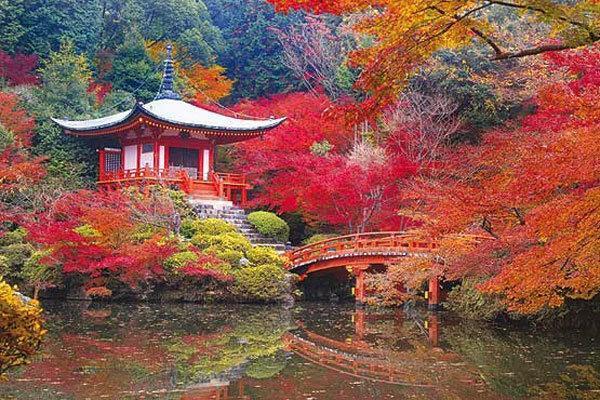 علاقه ژاپنی ها به جاذبه های کویری، راهنمایی سرمایه به سمت گردشگری