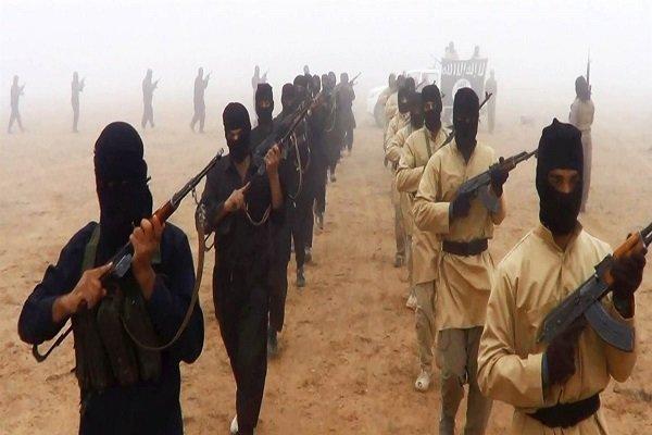 هلاکت 3 تن از سرکردگان القاعده در مغرب اسلامی