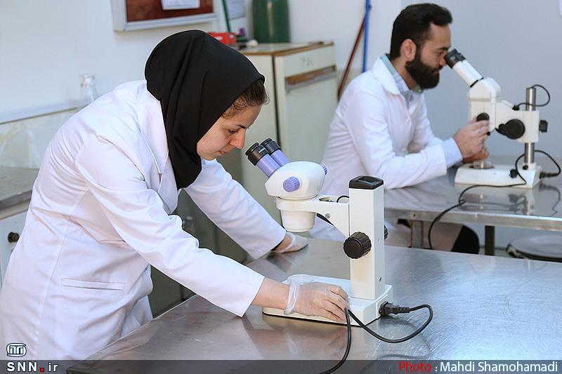مرکز جامع ویروس شناسی پزشکی در واحد تهران مرکز دانشگاه آزاد ایجاد می گردد