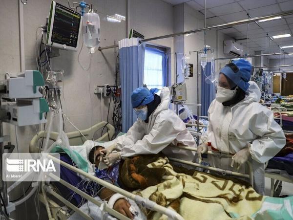 خبرنگاران رئیس دانشگاه پزشکی شیراز:شمار مبتلایان کرونا در فارس نشانگر بحران است